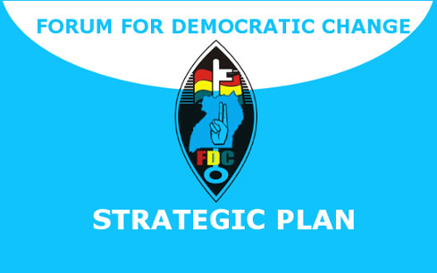 FDC Reviews its Strategic Plan